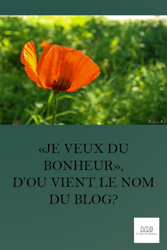 """""""Je Veux du Bonheur"""", d'où vient le nom du blog?"""