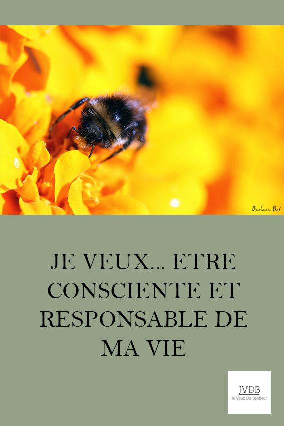 Je veux être consciente et responsable de ma vie
